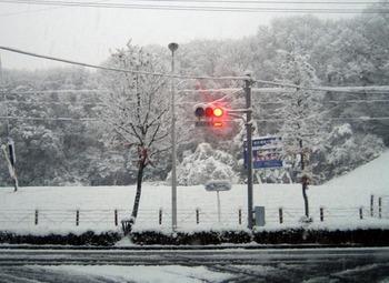 Yukigesyou